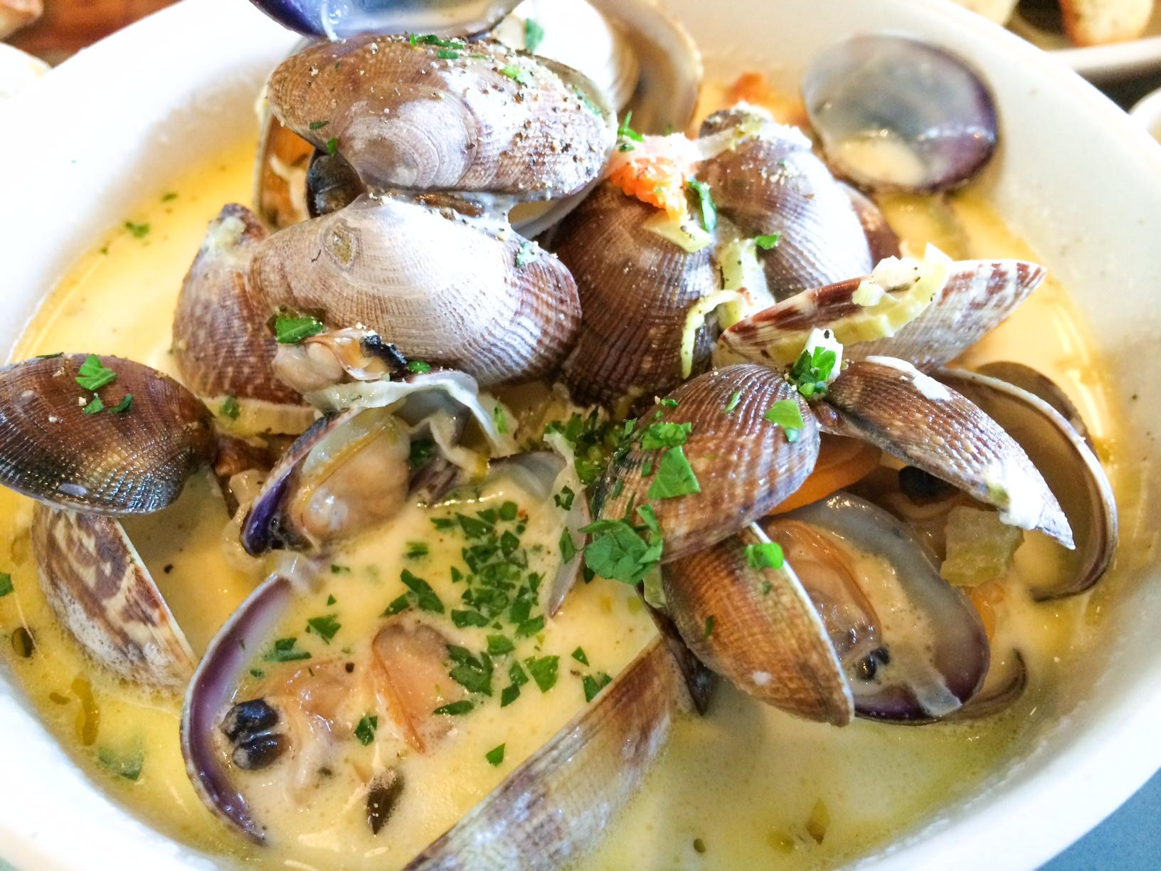 Hog Island Oyster Co- The best clam chowder & grilled cheese   Cyn ...