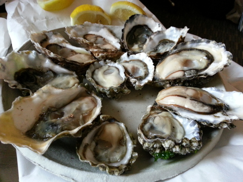 swan depot oysters