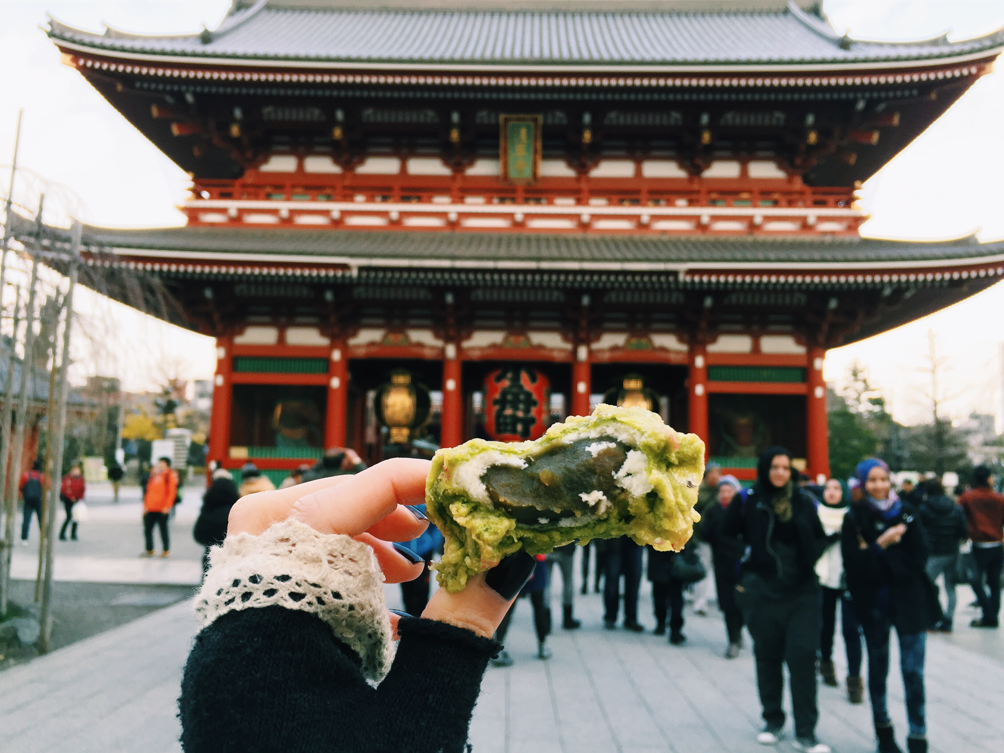 why to visit japan How do i even begin to describe what it's like to travel in japan it is an experience it surrounds you every moment of every day is filled with new discoveries and cultural difference and.
